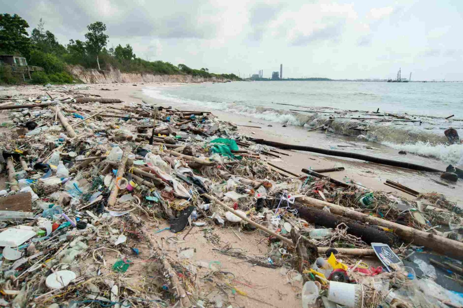 Our Environment with Single Use Plastics